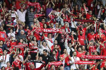 34ª J. Boavista-Benfica 16/17