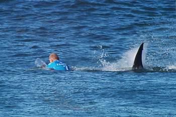 mick fanning atacado por tubarão