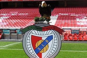 """Benfica apresenta """"novas"""" águias aos adeptos"""