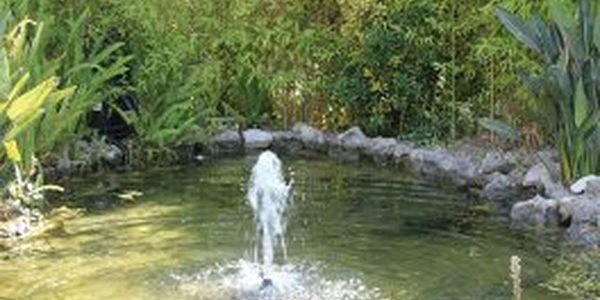 Lagos ajudam a refrescar jardins sapo lifestyle for Lagos de jardin