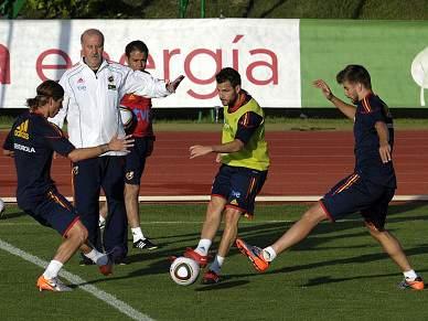 Fabregas e Puyol aptos