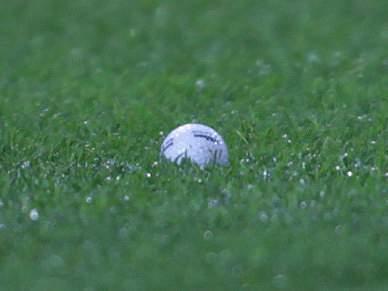Bolas de golfe podiam interditar Dragão