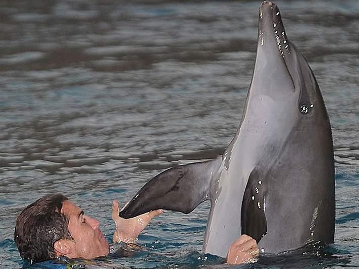 Natal de Ronaldo é com os golfinhos
