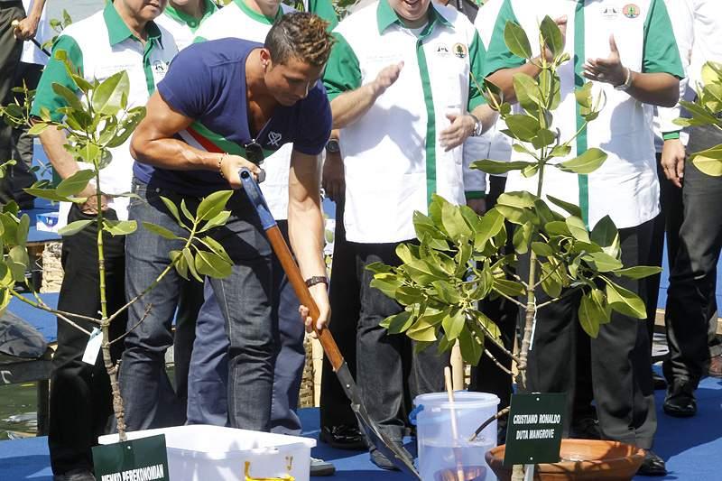 Cristiano Ronaldo apela à defesa das florestas de mangal da Indonésia
