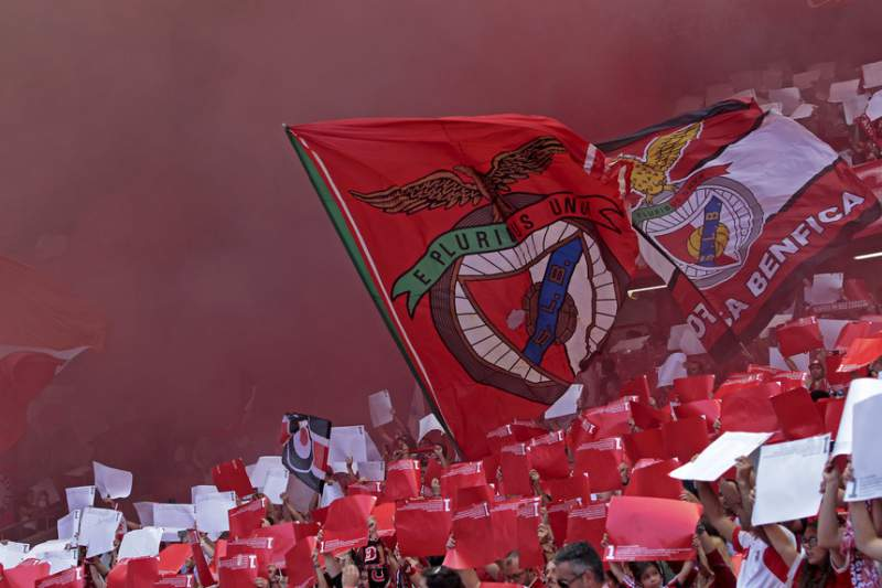 Adeptos do Benfica