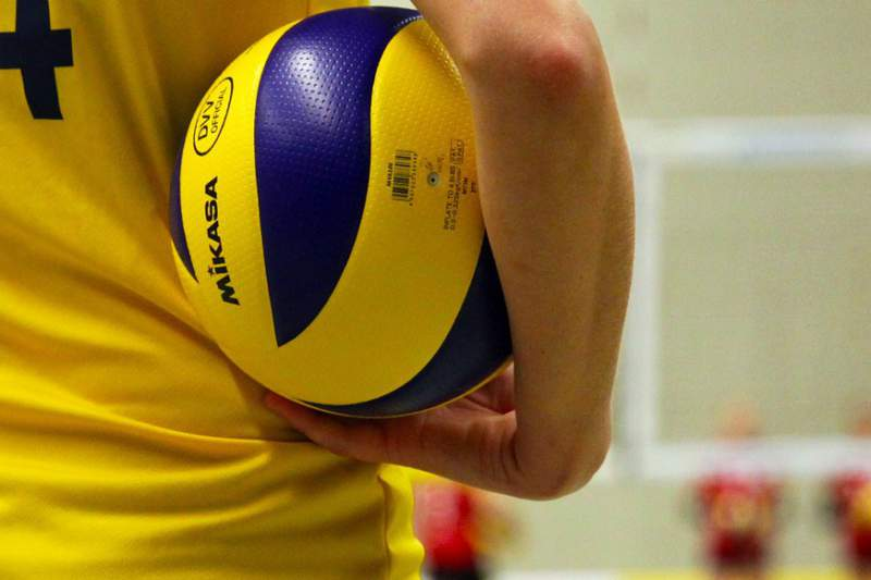 Voleibol Desporto