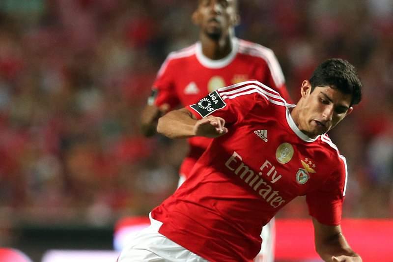 Vítor Gomes em ação no Estádio da Luz
