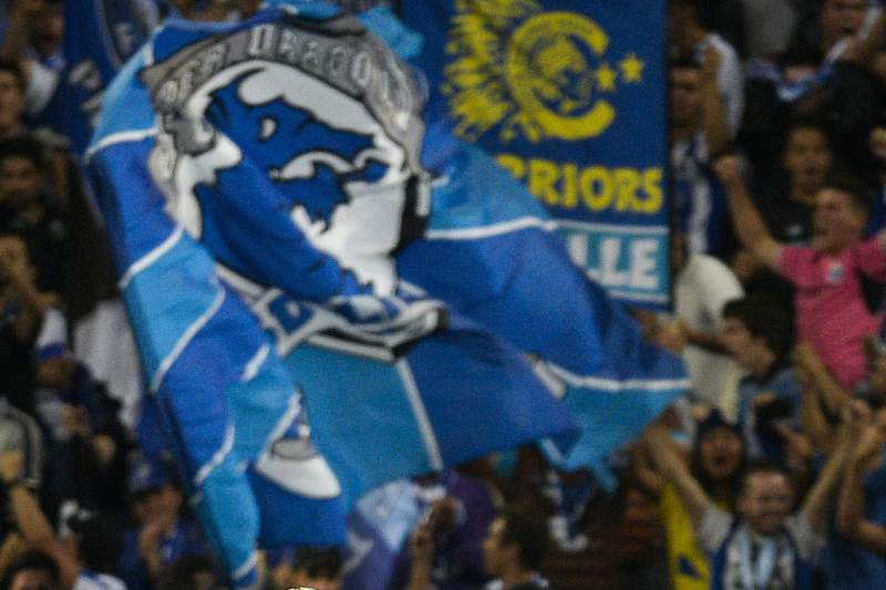 Adeptos do FC Porto
