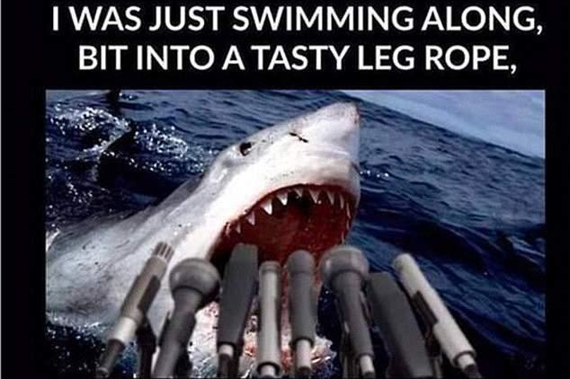 Meme do ataque de tubarão a Mick Fanning