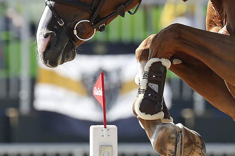 Cavaleira Luciana Diniz na final de saltos com obstáculos