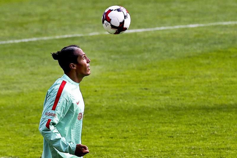 Bruno Alves, defesa central da seleção
