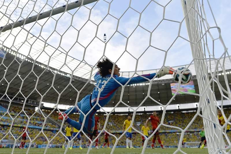 Ochoa trava Brasil