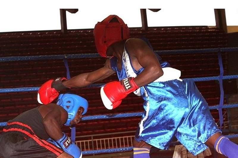 Boxe Angola