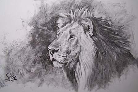 Pintura de um leão de Ad Soer