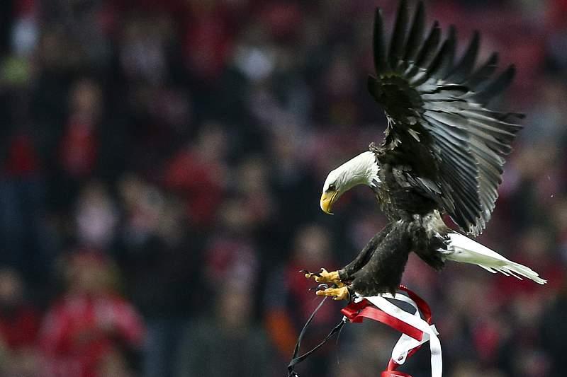 Benfica vence Sporting por 2- 0 no Est