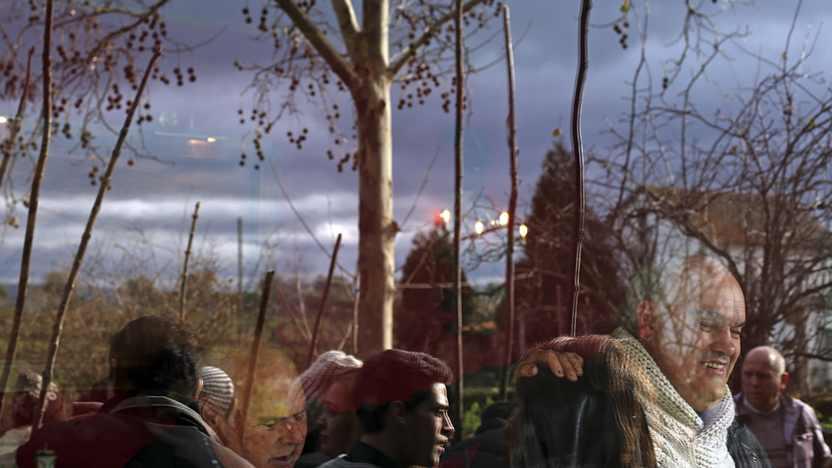 Com varas ou à mão, cegos experimentam a apanha da azeitona no Douro