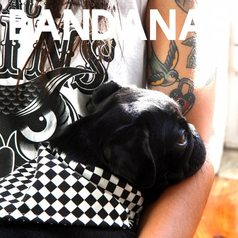 The Classic | Dog Bandana