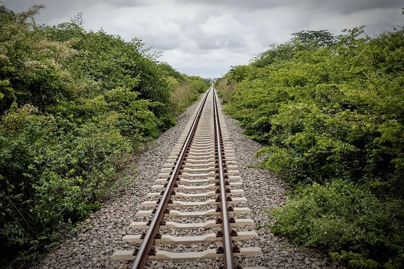 Resultado de imagem para Circulação ferroviária restabelecida nos dois sentidos na Linha do Norte