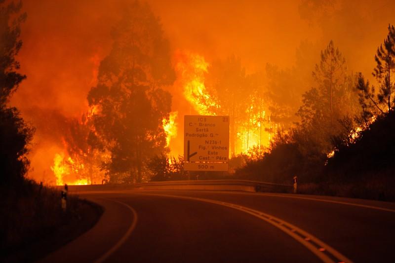 Resultado de imagem para incendios pedrogao