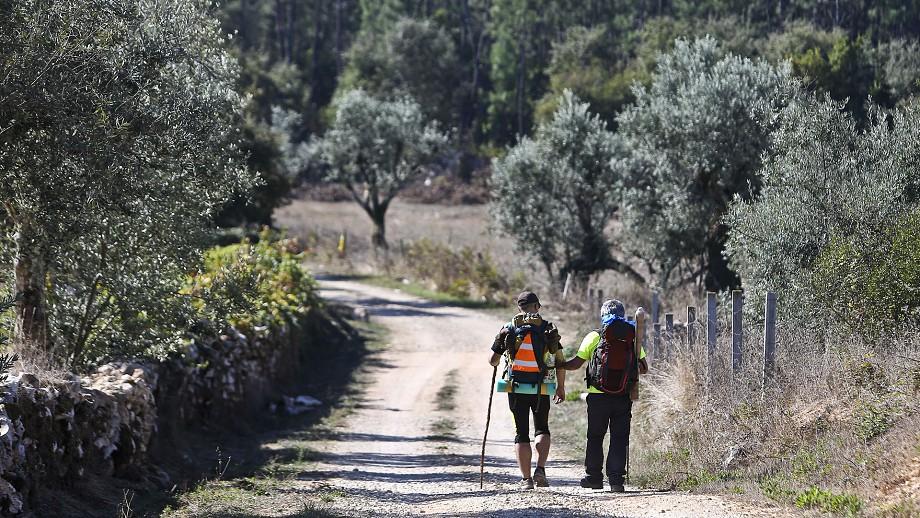 Peregrinos percorrem caminho alternativo para Fátima