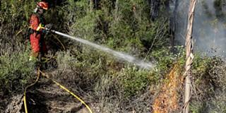 Resultado de imagem para Fogo no concelho de Góis obriga a evacuar aldeias