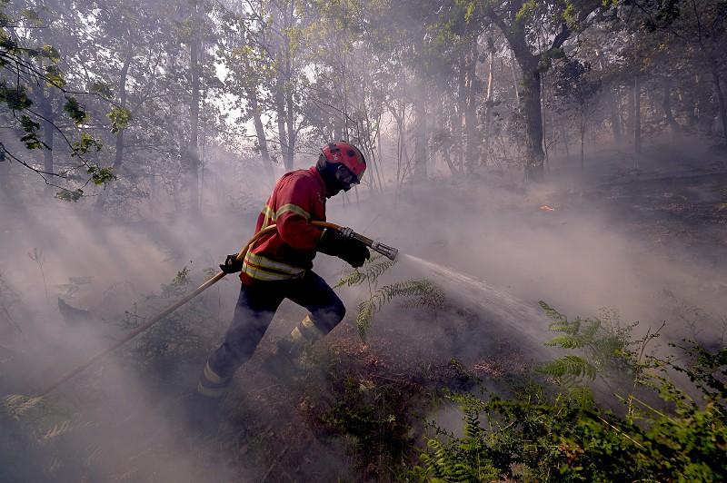 Resultado de imagem para Seis mil Incêndios registados antes de começar época oficial