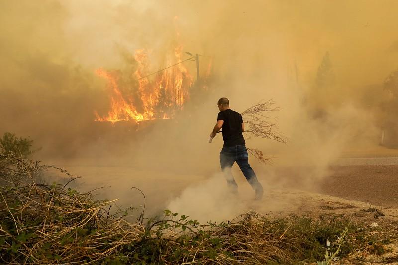 Resultado de imagem para Fogo destruiu 3.130 hectares de floresta na Figueira da Foz
