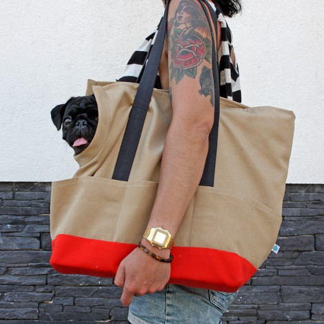 Dog Carrier // Sand on Red