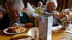 Portugueses investigam causas e consequências da desnutrição na população idosa