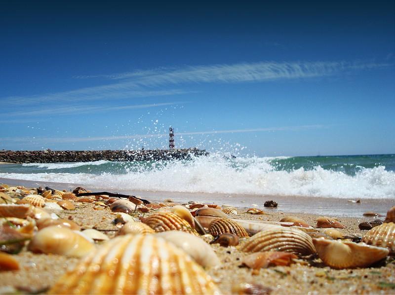 Faro Algarve Portugal Beach portimao albufeira alvor attraction atracoes turismo tour boat tour barco ilha island deserta barreta animaris estamine restaurante restaurant