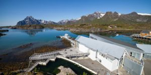 The Lofoten Aquarium