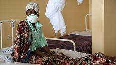 Epidemia de febre-amarela matou sete pessoas nos arredores de Luanda