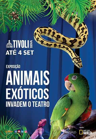 Animais Exóticos Invadem O Teatro