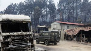 Resultado de imagem para Incêndios de Pedrógão fizeram 20 milhões de prejuízos, estima Governo