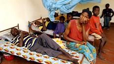 Associação portuguesa leva projeto para combater arritmias em Angola