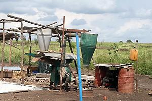 A instalação de uma moagem no município ajuda a preparar a farinha de milho