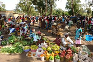 O mercado da Humpata é um  verdadeiro mostruário do que há de melhor em matéria de frutas na província da Huíla