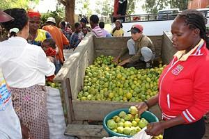 Os compradores chegam dos mais diversos recantos do país e saem satisfeitos com os preços e a qualidade dos produtos