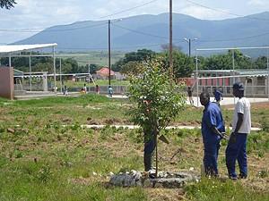 Parques infantis e jardins dão uma nova imagem à vila que renasce com pujança  dos escombros da guerra