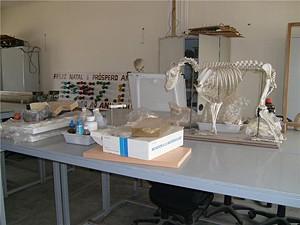 Os laboratórios da instituição estão inactivos na sequência de um assalto