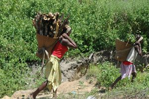 Josefina de Jesus Macosso com a filha regressam a casa depois da recolha de lenha para vender no mercado e sustentar a família