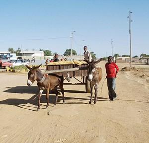 Camponeses reclamam estradas em melhores condições para poderem escoar a produção agrícola excedentária