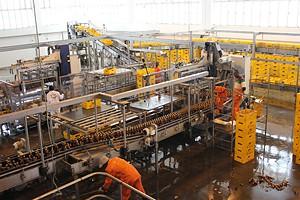 Uma parte da fábrica onde os trabalhadores estão a labutar seriamente o que permite a não importação do produto
