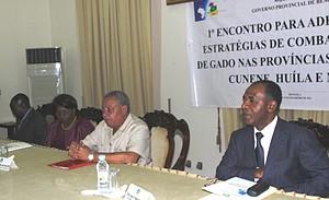 Governadores das regiões do Centro e Sul reuniram em Benguela para traçar plano de combate ao roubo de gado bovino