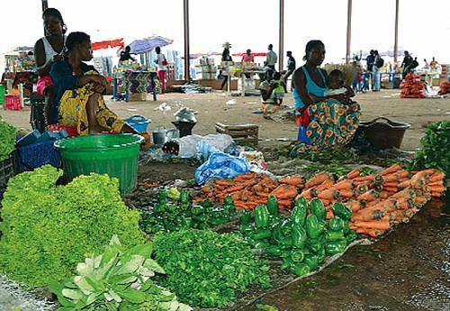Programas do governo virados para o combate à fome e à pobreza surtem efeitos no meio rural em Malanje