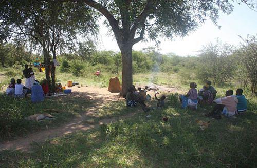 A seca levou centenas de camponeses a procurar áreas onde há água e pasto para o gado