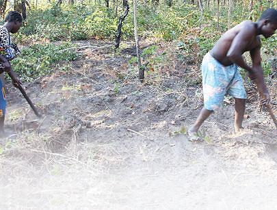 Produção agrícola familiar garante auto-suficiência