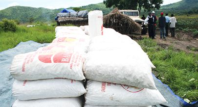 Programa doExecutivo garante nova perspectiva de desenvolvimento agropecuário do país