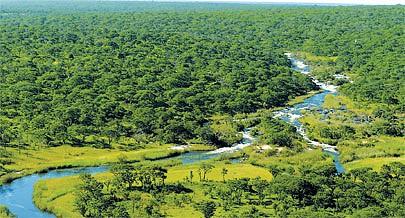O projecto Okavango-Zambeze inclui acções diversas que vão desde estudos de impacto ambiental à criação de unidades hoteleiras