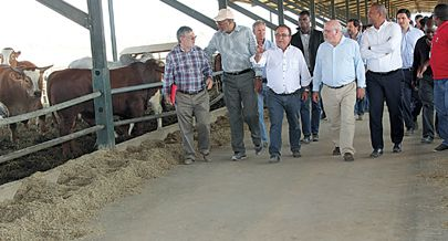 Membros de delegação portuguesa e do governo do Cuanza Sul visitaram demoradamente a  exploração pecuária da empresa Novagrolíder